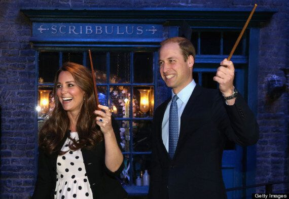 Penguins Named After Kate Middleton & Prince William Expecting First Chicks