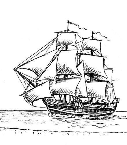 HMS Bounty's Baby