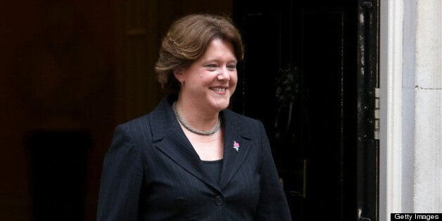 Culture secretary Maria Miller has seen her gay marriage bill pass the