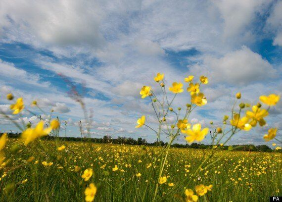 UK Weather: Warm Temperatures To Return For Bank Holiday