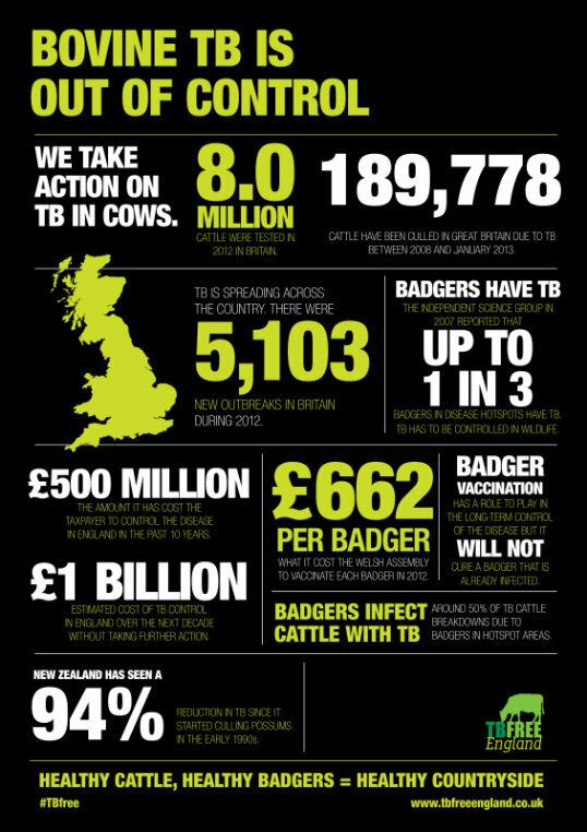 A Badger Cull Will Help Make Our Countryside TB