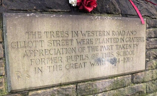 Campaigners Brand £500,000 Plan To Save Sheffield War Memorial Trees 'Slap In
