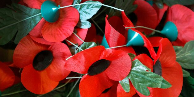 We Must Find A More Environmentally Friendly Way To Commemorate Remembrance