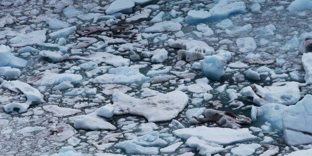 Bold Action Needed To Save Our 'Blue Planet' From The Effects Of Climate