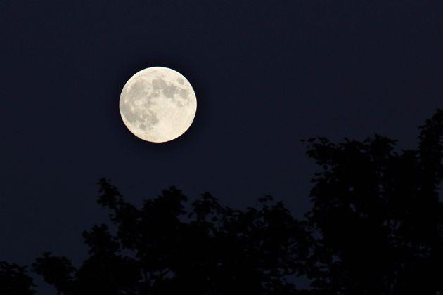 La Luna Fragola arriva il 17 giugno, la più dolce