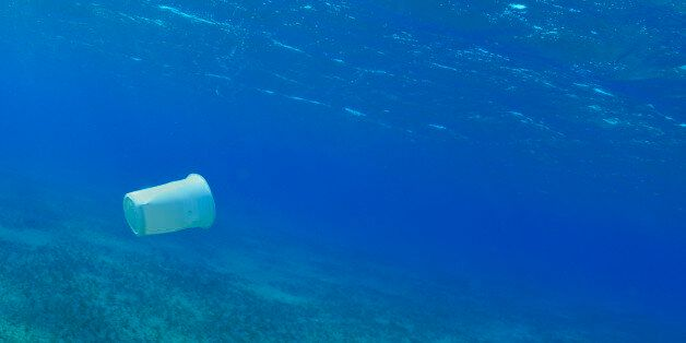 This Is What A New Plastics Economy Could Look