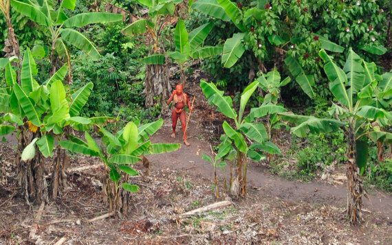 Uncontacted Tribes Are Not Only The Most Vulnerable Peoples On Earth - They're Also Vital To Its