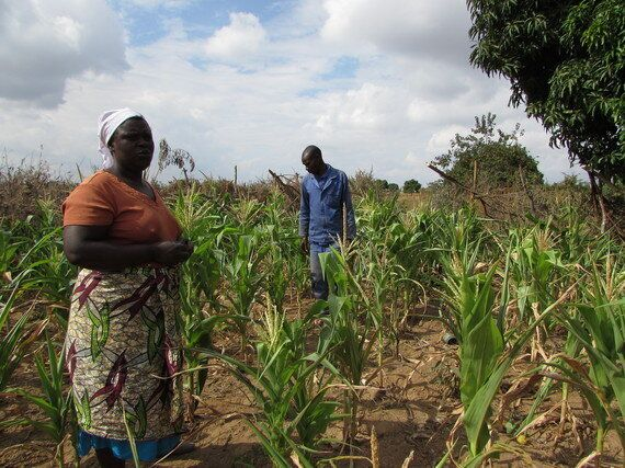 Drought In Zimbabwe: Getting Cash For Food Into People's