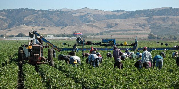 Migrants Don't 'Take Jobs' And Many Sectors Would Struggle Without