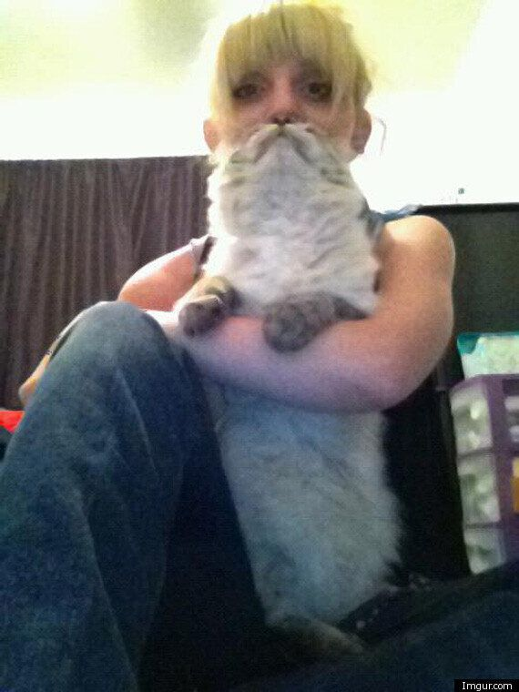 Picture Of The Day: Cat Beard Lady