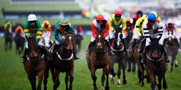 An Idiot's Guide To Betting At The Cheltenham Festival