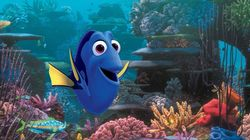 Finding Dory - A