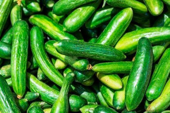 Cucumbers? Blame the