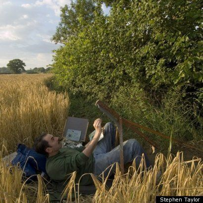 Oak: One Tree, Three Years, Fifty Paintings - an Interview With Artist Stephen