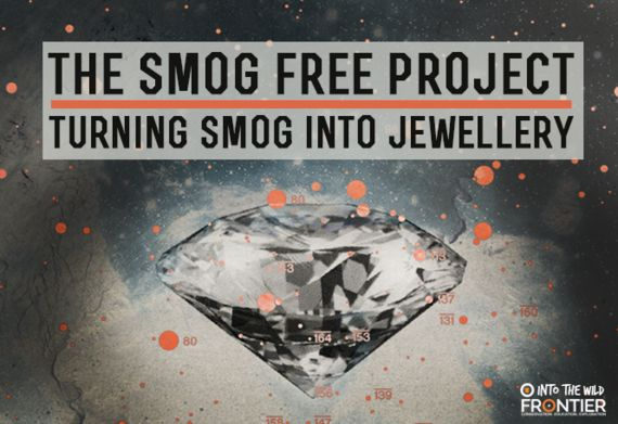 The Smog Free