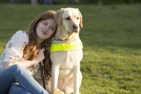 The Realities of Guide Dog Access