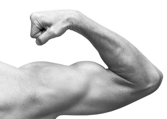 The Golden Rule for Bigger Arms | HuffPost Life