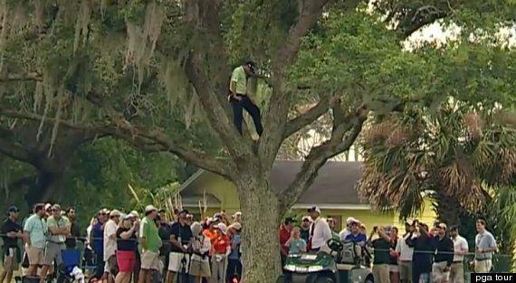Sergio García Tree Shot: Golfer's One-Handed, Backwards Swing At Bay Hill