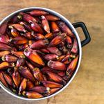 Os benefícios do pinhão e 5 receitas para saborear a