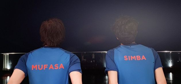 Shah Rukh Khan, Son Aryan Are Mufasa And Simba In The Lion King's Hindi