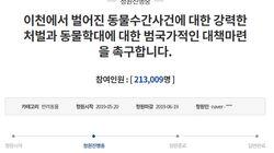 """″생후 3개월 강아지 수간 사건, 강력히 처벌해달라"""" 청원이 20만을"""