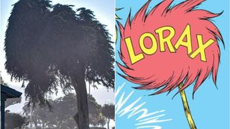 Lorax Tree