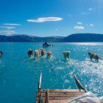 Η πραγματικότητα σε μια εικόνα: Φωτογραφία αποκαλύπτει την έκταση της απώλειας πάγου στη