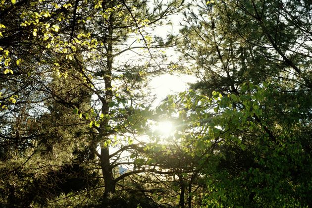 Non solo abbronzatura. 4 benefici della luce naturale su mente e