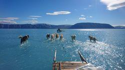 La slitta è trainata sull'acqua in Groenlandia: la foto simbolo dello scioglimento dei