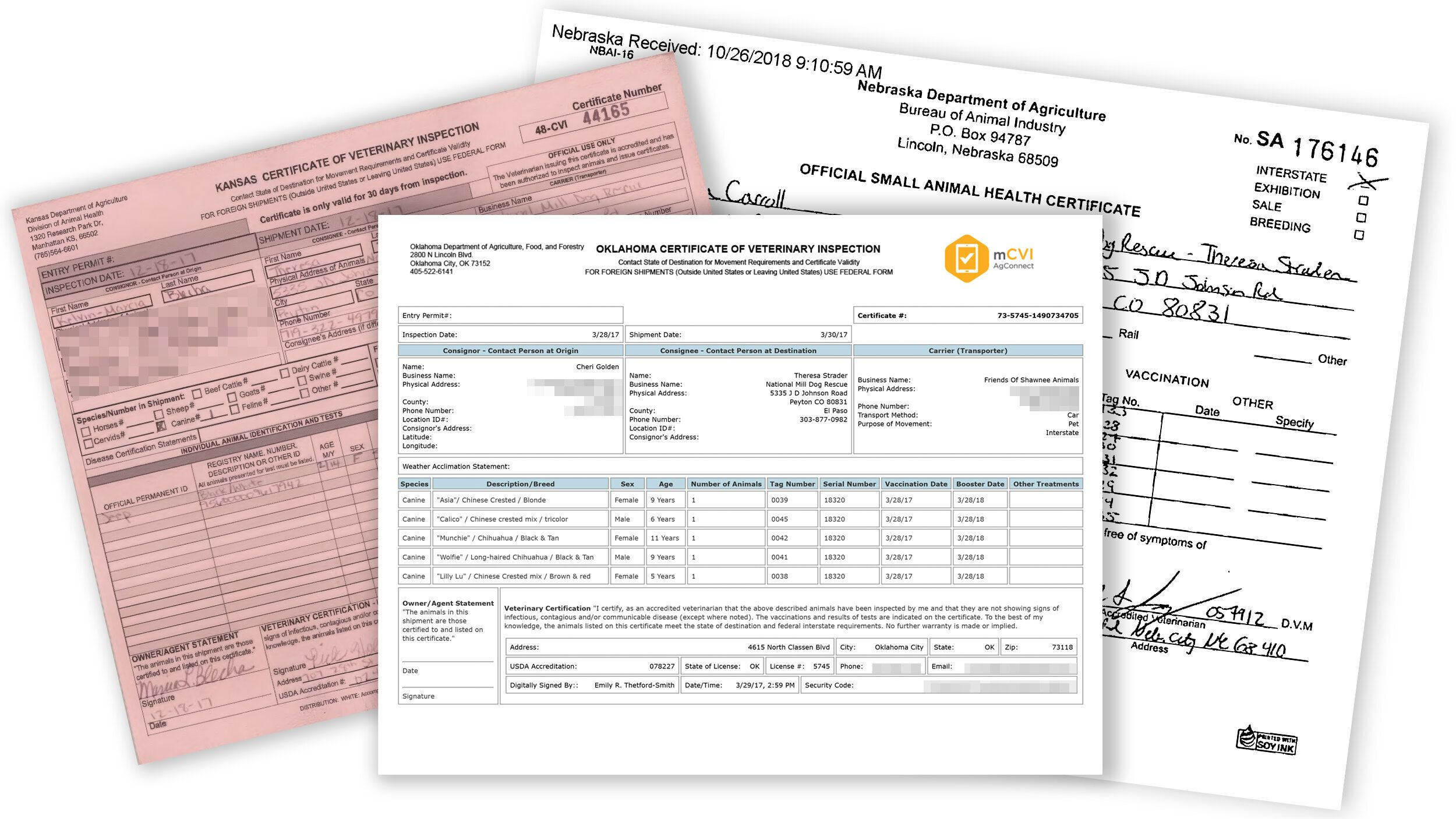 Examples of certificates of veterinary inspection from Kansas, Oklahoma and Nebraska.