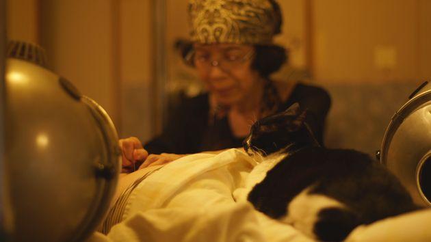 現在は、鍼灸師として多くの人の施術にあたる田中さん