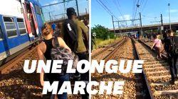Les images des usagers du RER D terminant leur voyage à