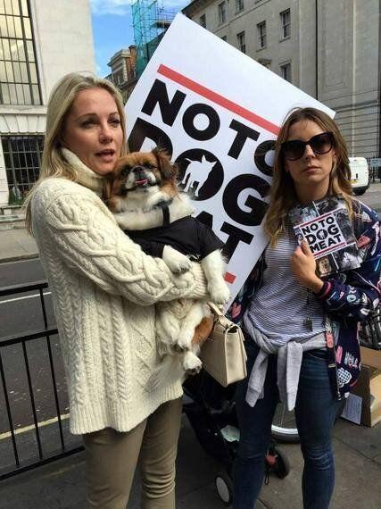 Yulin - Is China Finally Saying 'No To Dog