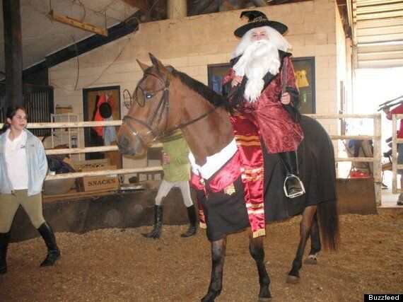 Horses Dressed As Harry Potter