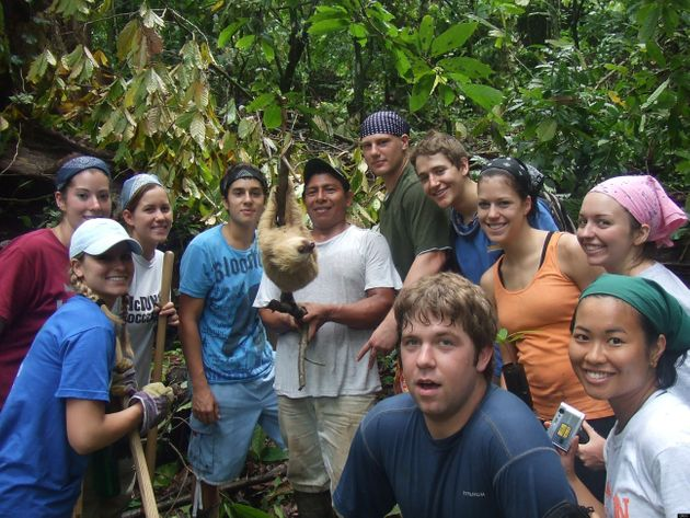 Sloth Photobomb: Hairy Mammal Flings Himself Into The Frame In Costa Rica