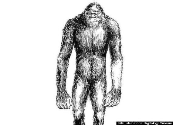 Three Yeti Sightings Reported In Siberia Ahead Of 'Abominable Snowman' Expedition