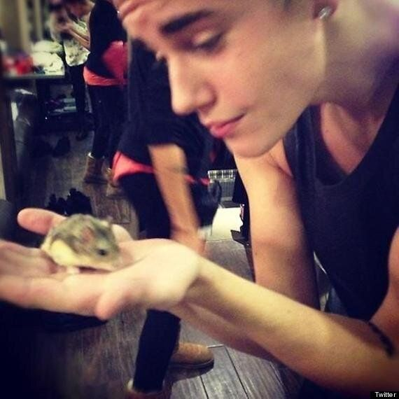 Justin Bieber Accused Of Animal Cruelty After Handing Pet Hamster To Screaming
