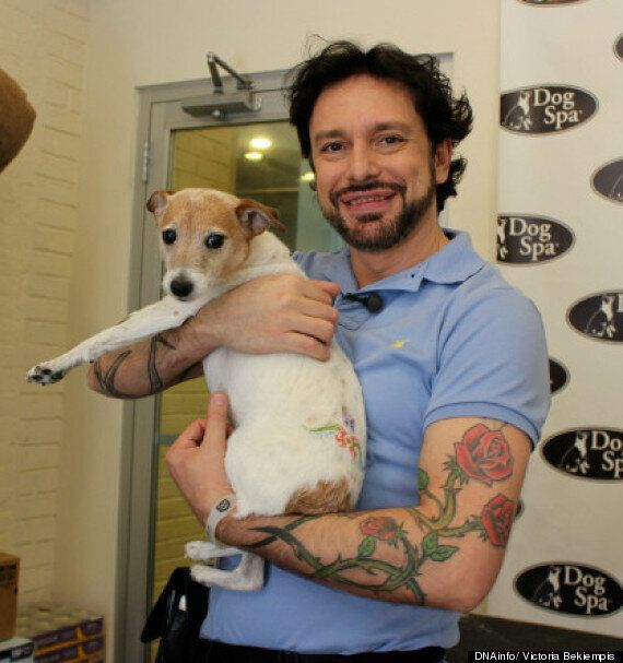 Jorge Bendersky, Celebrity Dog Groomer Provides Temporary Tattoos For Canines