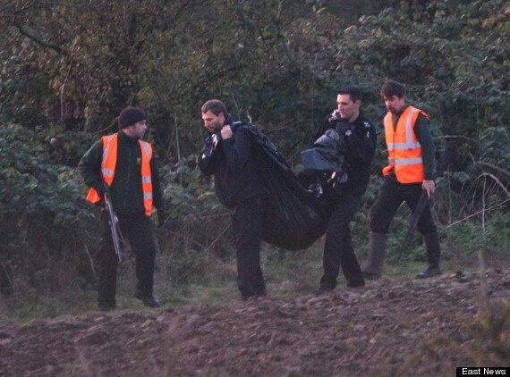 Two Wolves Shot Dead And One On The Loose After Escaping From Colchester
