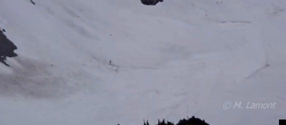 Sasquatch Spotted In Canada's British Columbia Mountains?