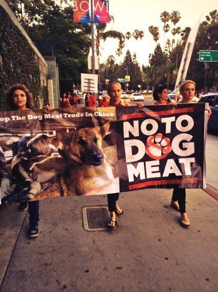Hollywood Celebrities Agree: Nothing 'Splendid' About the Dog Meat