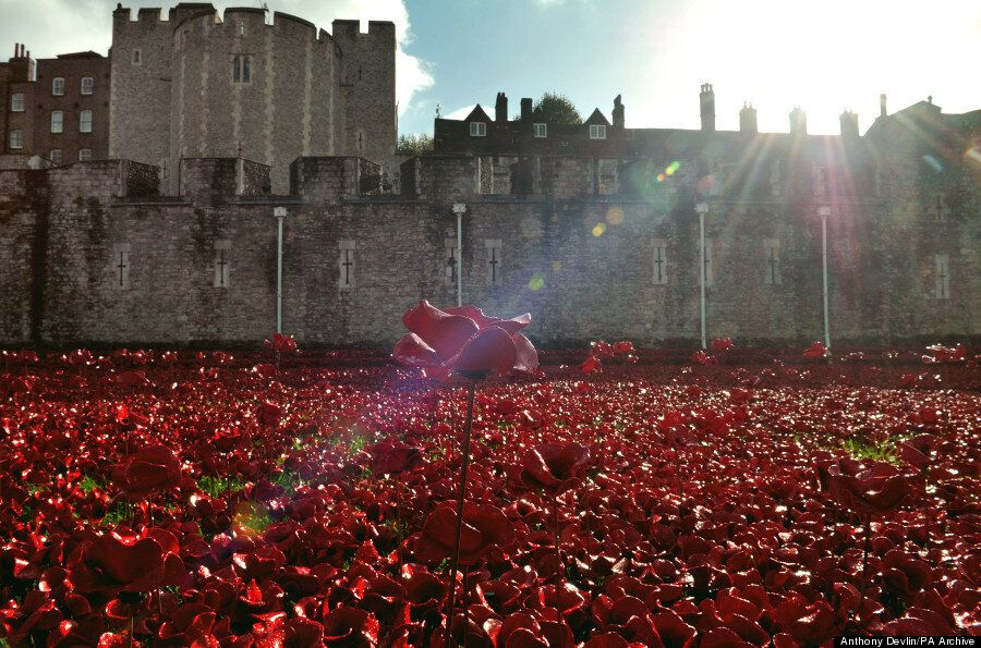 Tower Of London Poppies Spectacularly Displayed At Dusk As Boris Johnson Fights For Them To
