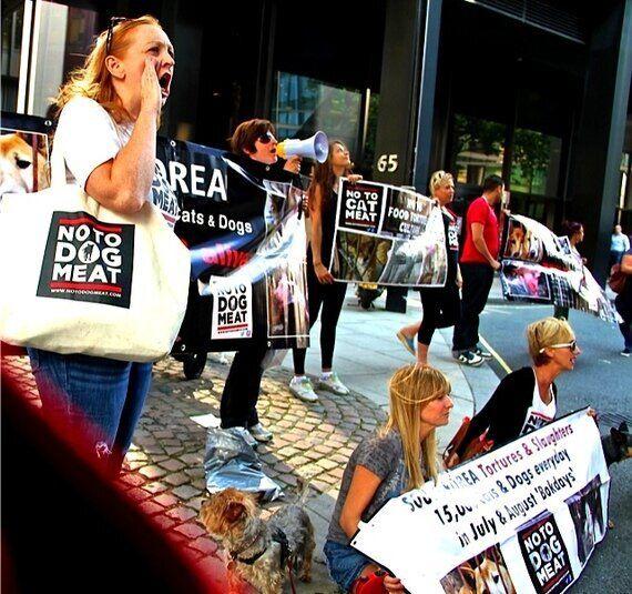 Yulin Dog Meat Torture Festival Will Go Ahead Despite Celebrity