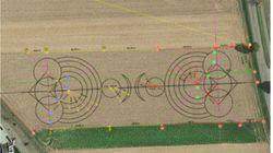 On connaît l'origine de ces crop circles en Alsace (et ils n'ont rien de