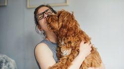 La SPCA offre des animaux gratuits cette