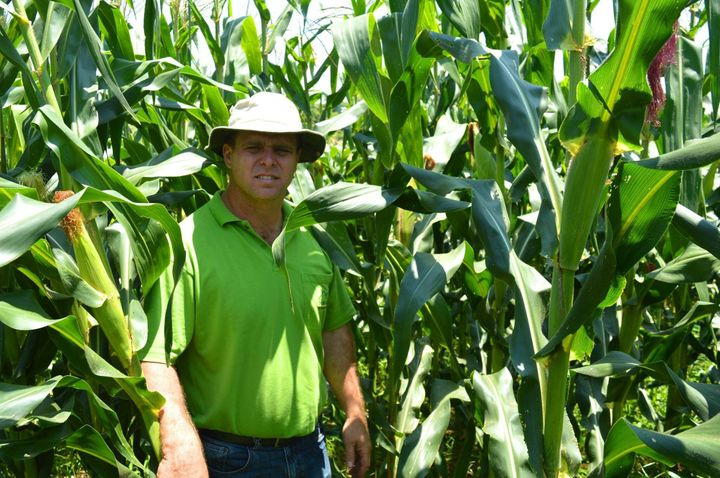 Valdemir Assarisse noSítio Santo Agostinho, local em que planta o milho e produz as pamonhas para a sua Fábrica Di Pamonha.