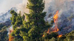 Τραγωδία στον Αυλώνα - Πήρε φωτιά το Ι.Χ. του και κάηκε