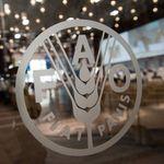 La Tunisie présente sa candidature pour un siège au conseil de la