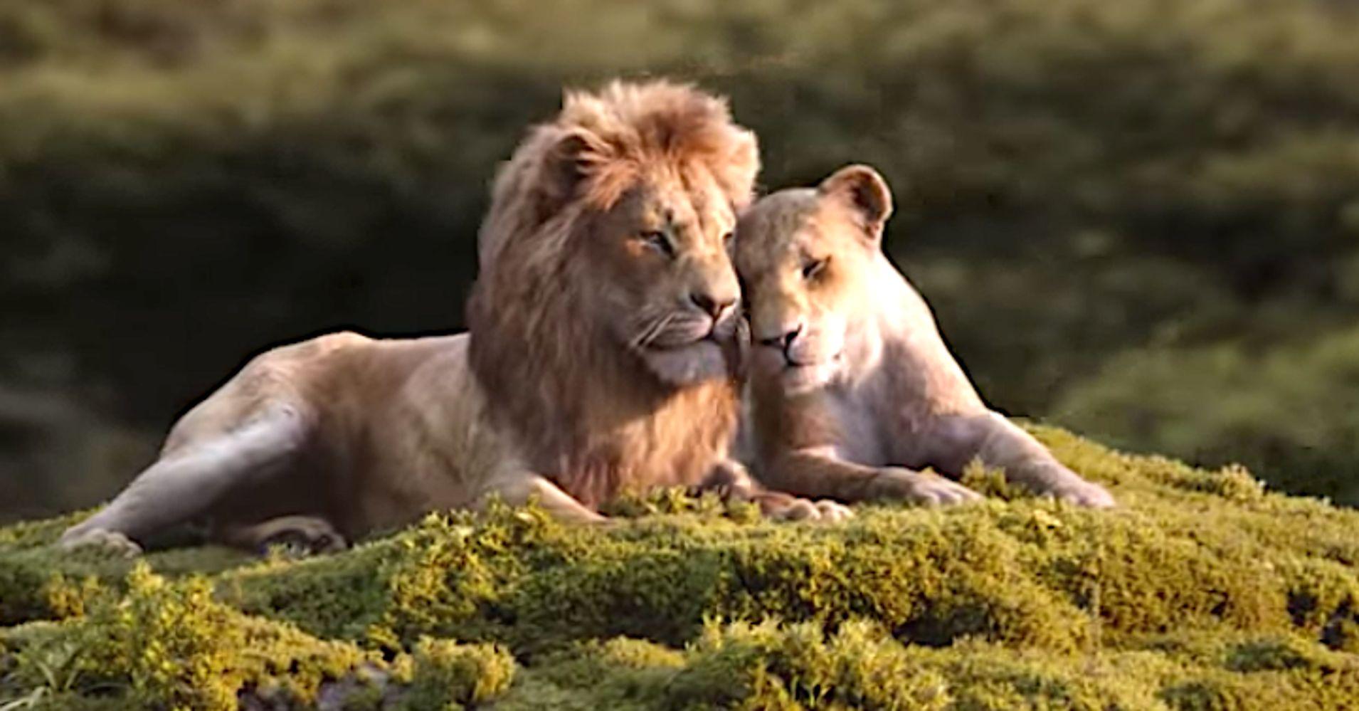 lion king 2019 teaser download