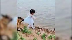 La bimba cerca di prendere la palla caduta in acqua. Il cane fiuta il pericolo e la recupera